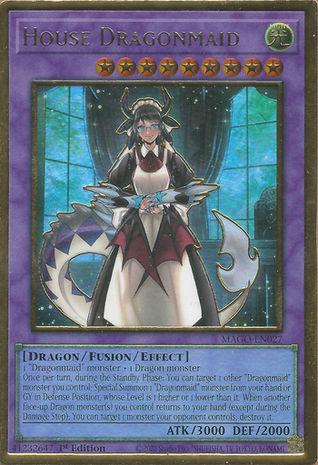House Dragonmaid