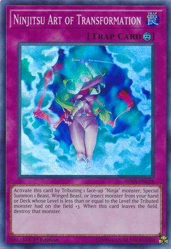 Ninjitsu Art of Transformation