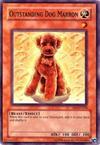 Outstanding Dog Marron
