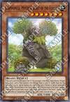 Carpiponica, Bestia Mistica della Foresta